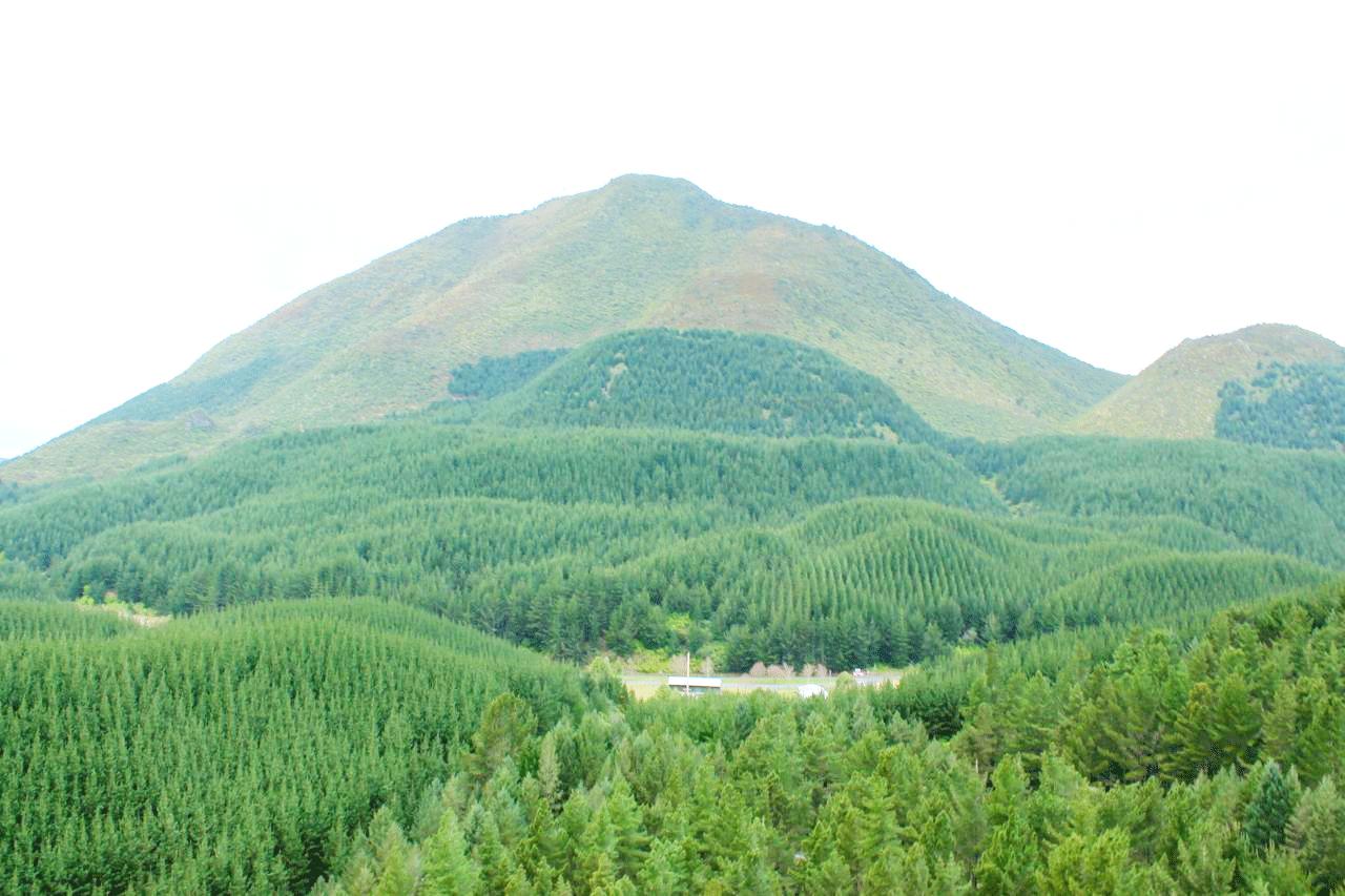 Maunga1.png