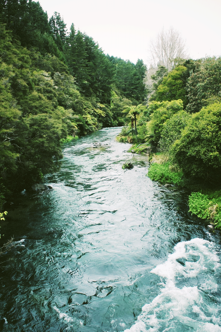 River3.png